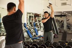 Working on those triceps at the gym Royalty Free Stock Images