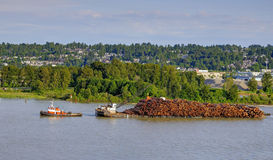A working tugboat towing a cargo ship full of logs on a river Stock Photography