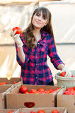 Working with vegetables Stock Photography