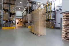 Working in warehouse Royalty Free Stock Images