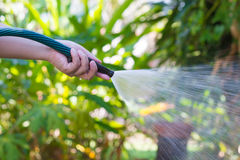 Working watering garden from hose.  stock photos