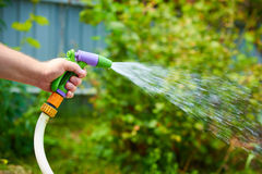 Working watering garden from hose Royalty Free Stock Image