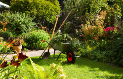 Working with wheelbarrow  in the garden Royalty Free Stock Image
