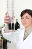 Working in a wine laboratory Royalty Free Stock Photos