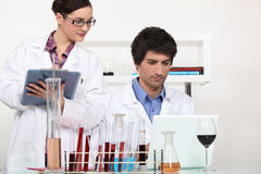 Working in a wine laboratory stock photography