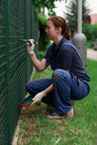 Working woman. Image of a woman painting a green  fence Stock Image