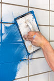 Workman applying blue grout to white tiles. On a wall indoors using a rubber trowel to apply the colorful mortar in DIY, renovation or construction concept Royalty Free Stock Photos