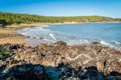 Workman beach in Agnes Water in the summer in Australia royalty free stock photo
