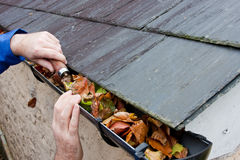 Workman Clearing Autumn Leaves from Gutter royalty free stock image