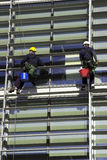 Workmen Abseiling A Building. Workmen abseiling a corporate building stock photos