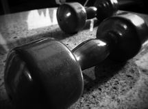 workout Imagens de Stock Royalty Free
