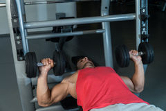 Workout Bench Dumbbell Training Royalty Free Stock Photography