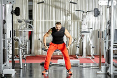 Workout at cable machine Royalty Free Stock Photo