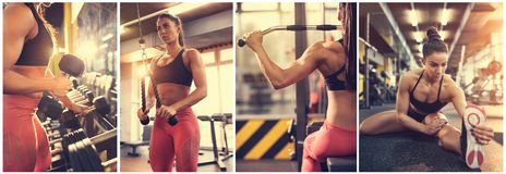 Workout. Collage woman Bodybuilding collage at gym Stock Photo