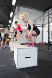 Workout group trains box jumps at the fitness gym Royalty Free Stock Image