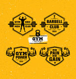 Workout Gym Sport and Fitness Motivation Vector Design Elements on Grunge Background Royalty Free Stock Images