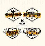 Workout Gym Sport and Fitness Motivation Vector Design Elements on Grunge Background Royalty Free Stock Photos