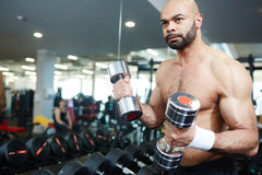 Workout in gym Stock Photo