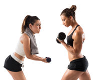 Workout in the gym with trainer Royalty Free Stock Photo