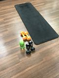 Workout setup. Workout weights water mat Royalty Free Stock Photography