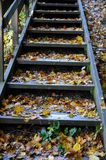 Workout stairs in october Stock Images