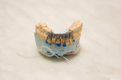Workplace of the dental technician Royalty Free Stock Image