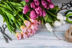 Workplace florist. Multicolored tulips on a horizontal wooden background. Top view. Multicolored tulips on a horizontal wooden background. Top view. Workplace stock images