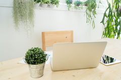 Workplace at garden, wood table with laptop, tablet, smartphone. And dwarf tree on pot Stock Images