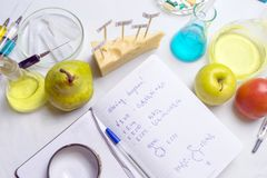 Workplace lab assistant top view. Food safety laboratory procedure, analysing fruits from the market. Notebook and blue pen on the royalty free stock photography