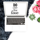 Workplace Laptop screen succulent fur flowers Flat lay mock up Stock Photo