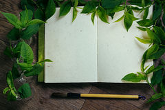 The workplace painter and green leaves. The presentation. The blank notebook. Spring time blank notebook. Background stock photos