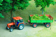 Works in public park, tractor with trailer Stock Image