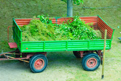 Works in public park, tractor with trailer Royalty Free Stock Photos
