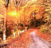 The works in the style of watercolor painting. Autumn alley. Stock Photos