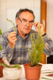 Workshop of knowing herbs, touching and smelling basil and thym. Royalty Free Stock Photography