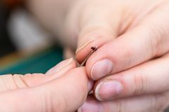 Craftsman inserts a thread in the eye of a needle royalty free stock photography