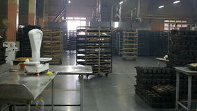 Workshop production of bread and other baked goods stock video