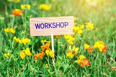 Workshop signboard. Workshop on small wooden signboard in the green grass with flowers and sun ray royalty free stock image