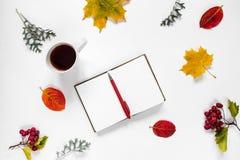 workspace Composição lisa do caderno aberto, pena, um copo do chá, folhas de outono, folha de bordo, bagas vermelhas da montanha Fotografia de Stock