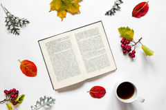 Workspace. Composition of text book, a cup of tea,autumn leaves, red berries of haw on white background Stock Image