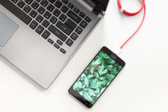 Workspace with laptop and charging smartphone on white desk. Smartphone with green plants screen is connecting to laptop computer.  Stock Image