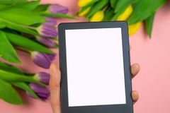 Tulips and tablet with white mockup screen on pink background. Greeting card for Easter or Women`s Day. Workspace top view overhead above present advertising stock photos