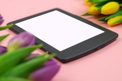 Tulips and tablet with white mockup screen on pink background. Greeting card for Easter or Women`s Day stock images