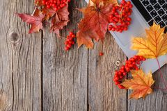 Workspace with yellow and red maple leaves. Desktop with laptop, fallen leaves on grey wooden background stock images