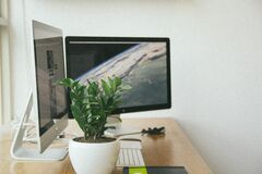 Workstation with monitors and houseplants Royalty Free Stock Photos