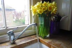 Worktop da cozinha Fotos de Stock Royalty Free