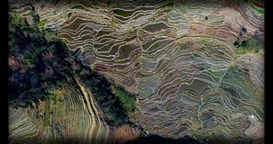 World's la maggior parte di bei posti Terrazzi del riso di Hani Immagine Stock Libera da Diritti