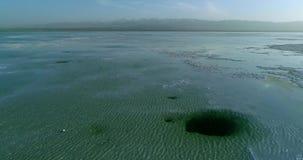 World's most amazing scenic spots. Chaka Salt Lake stock video