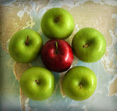 World of Apples Stock Photography