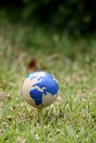 World ball. In the grass Stock Images